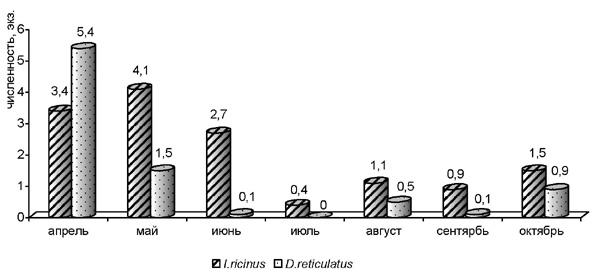 Динамика относительной численности I. ricinus и D. reticulatus (на флаго/км) на территории Воронежского заповедника