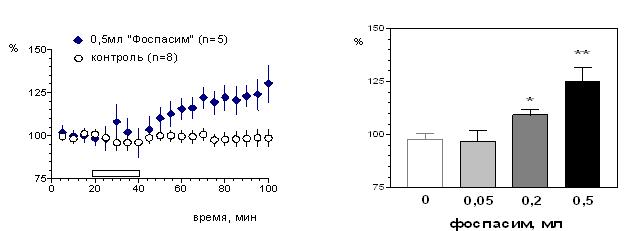 """Следовое облегчение реактивности пирамидных нейронов гиппокампа под действием препарата """"Фоспасим"""